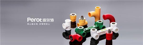 2021中国管业十大品牌——皮尔特管业